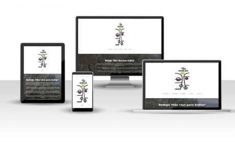 posicionamiento web en canarias