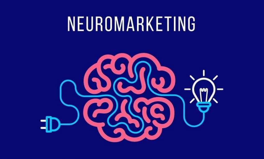 Neuromarketing: todo lo que debes saber para aplicarlo a tu estrategia SEO