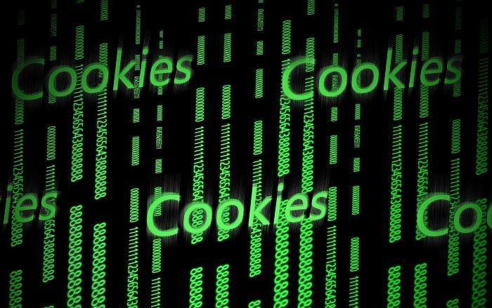 Fin cookies google